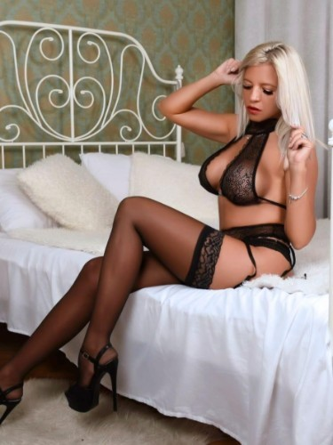 EscortAngelsVienna - Escort agencies - Katy