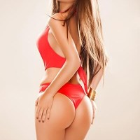 My Escort Amsterdam - Escort Agencies in Goes - Talisa
